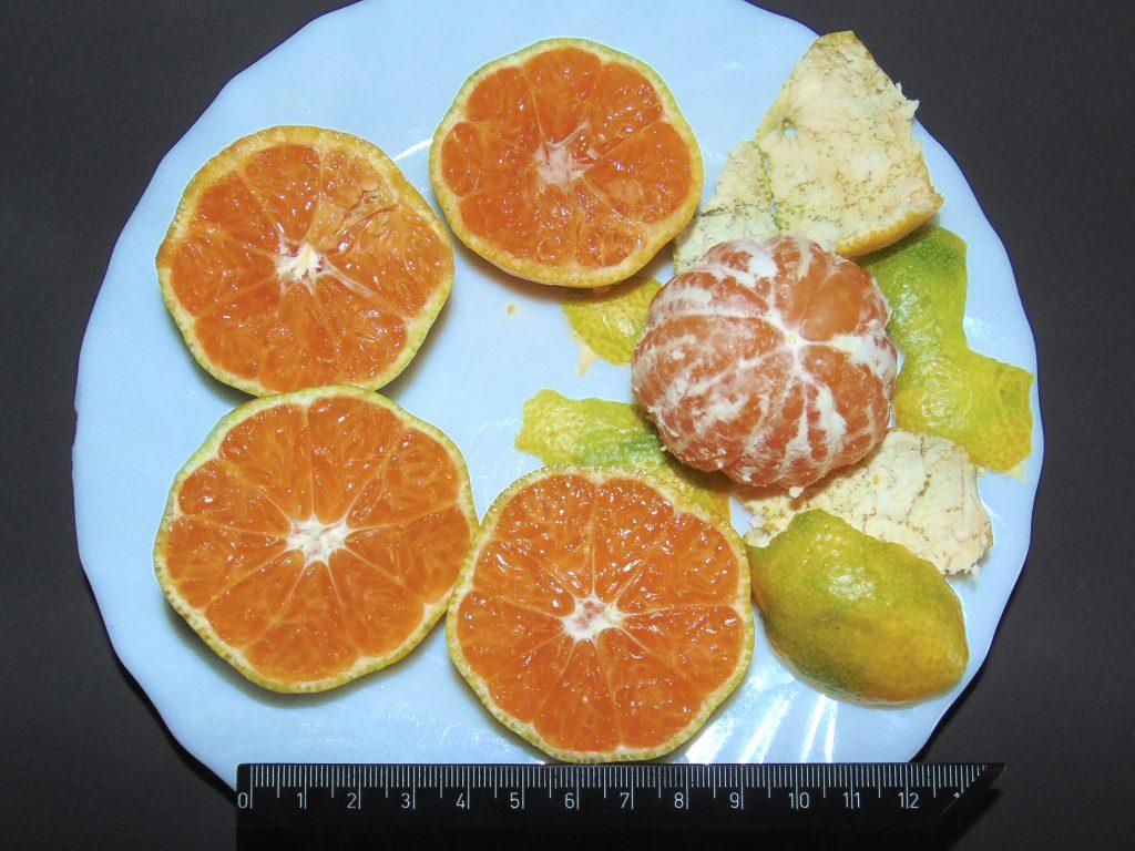 mandarynka Karlik - owoce